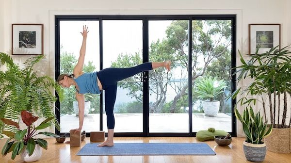 Hero Image Vinyasa Essentials Bonus Practice Class
