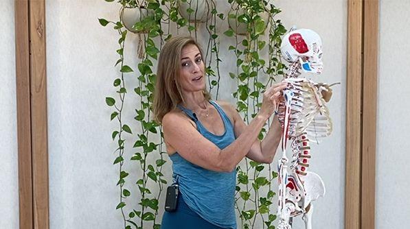 Hero Image Anatomy for Yoga Part 2
